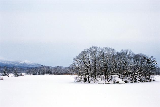 北海道_09