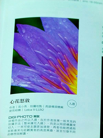 12_小燕02